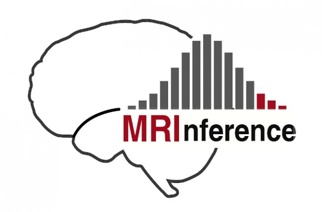 Collegamento a International Winter School 2021 - MRInference